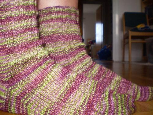 madder ribbed socks